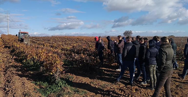 voyage-etude-viticulture-02